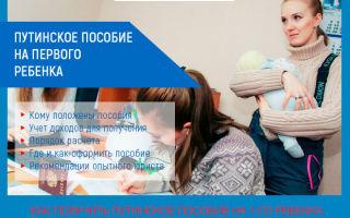 Путинское пособие на первого ребенка: особенности, как получить, расчет