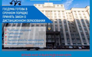 Госдума готова в срочном порядке принять закон о дистанционном образовании