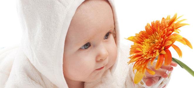 Губернаторская выплата при рождении ребенка и компенсация за детский сад Ярославль