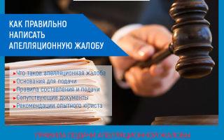 Апелляционная жалоба на решение суда в 2020 году