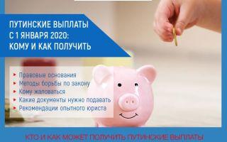 Путинские выплаты с 1 января 2020: кому и как получить