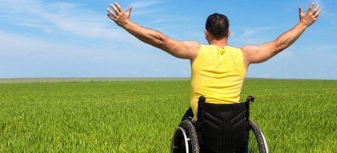 Как инвалиду получить земельный участок бесплатно в 2019 году