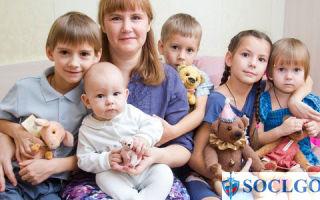 Как получить статус малоимущей семьи в 2019 году