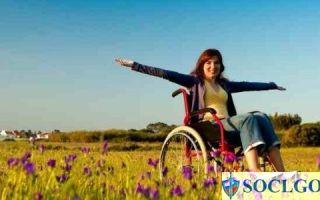 Как инвалиду получить земельный участок бесплатно