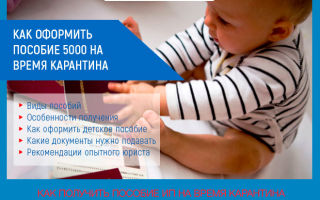 Как оформить и получить детское пособие во время карантина