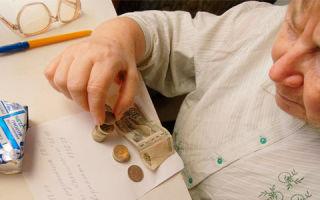 Пособие по бедности. Перспективы его внедрения в РФ