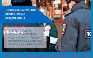 Штрафы за нарушение самоизоляции в Московской области