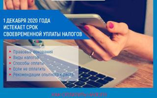 1 декабря 2021 истекает срок своевременной уплаты налогов за 2019 год