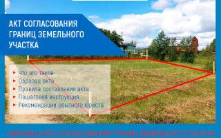 Акт согласования границ земельного участка с соседями образец бланка