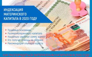 Индексация материнского капитала в 2020 году