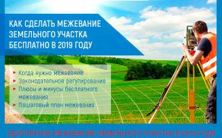Как сделать межевание земельного участка бесплатно в 2019 году
