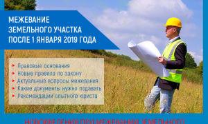 Межевание земельного участка после 1 января 2019 года: обязательно или нет