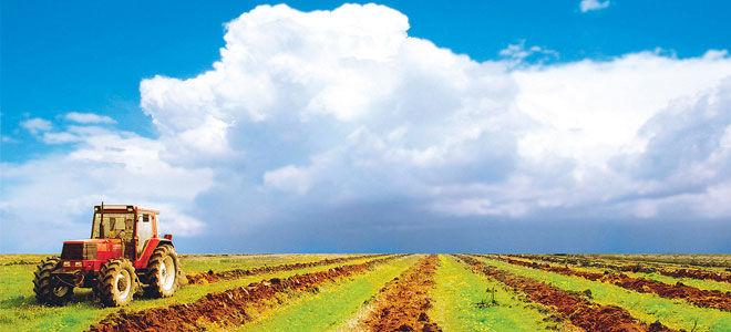 Субсидии на сельское хозяйство