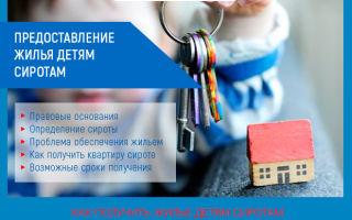 Предоставление жилья детям сиротам в 2019 году