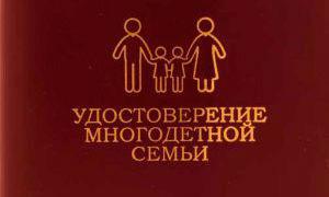 Льготы многодетным семьям в Мурманской области