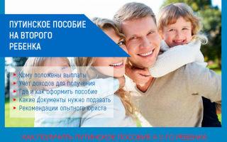 Путинские выплаты на второго ребенка: кому положены, расчет, получение