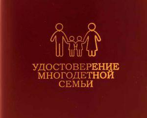 Льготы для многодетных семей в 2019 году в Москве
