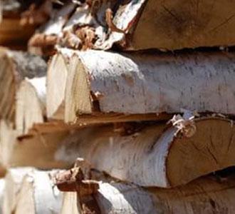 Льготное обеспечение дровами в Улан-Удэ