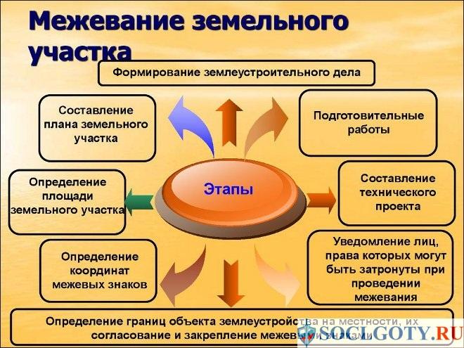 этапы межевания участка