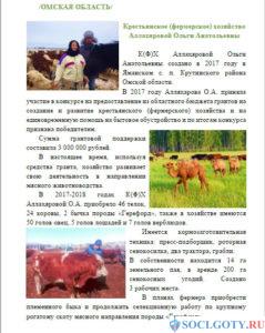 Грант на развитие сельского хозяйства - пример 3
