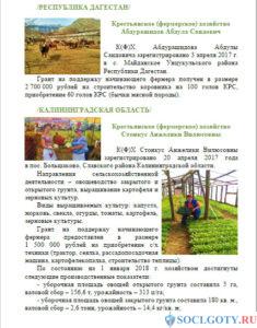 Грант на развитие сельского хозяйства - пример 4