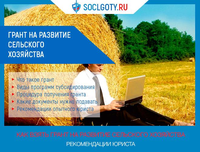 Грант на развитие сельского хозяйства в 2019 году: требования к претендентам, условия получения